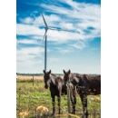 Siemens receives order for Grand Bend Wind Farm in Canada