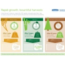 Kimberly-Clark Professional Launches Innovative GreenHarvest Products Made With Rapidly Renewable Plant Fiber