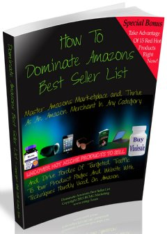 Dominate Amazon�s Best Seller List