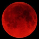 Rare Solar Eclipse and Very Rare Tetrad of Blood Moons--What Do They Mean?
