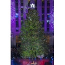 Lumber from iconic Rockefeller Center Christmas Tree to be used in building Habitat for Humanity home in Philadelphia