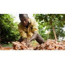Mars Chocolate UK and Fairtrade extend partnership to certify cocoa for MARS� Bars