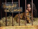 TLC�s Chilli Strips To Stripes For Peta�s New Anti-Circus Campaign