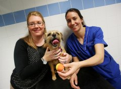 Trixie with her owner Melanie Pounder and PDSA vet Emma Holt