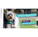 Pooch Passenger Campaign Raises Money For Manchester Dogs Home