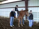 Dickinson Insurance and Financial Services Initiates Charity Campaign in Northwest Arkansas to Collaborate with Horses for Healing, a Nonprofit Therapeutic Riding Center for Kids with Special Needs