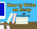 Scribendi.com�s Essay Writing Course Launched on Udemy