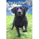 A Fun New Dog Book Available for Free