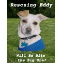 Rescuing Dogs: E-book Release of �Rescuing Eddy�