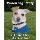 UPDATE: �Rescuing Eddy� FREE E-book Download