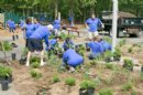 Canon U.S.A.�s Clean Earth Crew Beautifies Lakeland County Park in Islandia