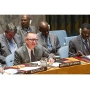 Sanctions are �effective� method to build global stability, Security Council told