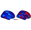 Carnegie Mellon, Weizmann Institute Researchers Discover