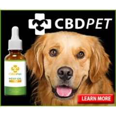 Nutra Pure Adds Organic CBD Oil For Dogs And Cats To Product